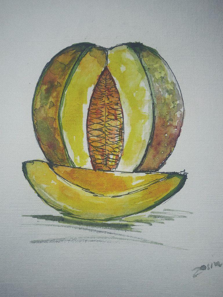 Melon rysunek
