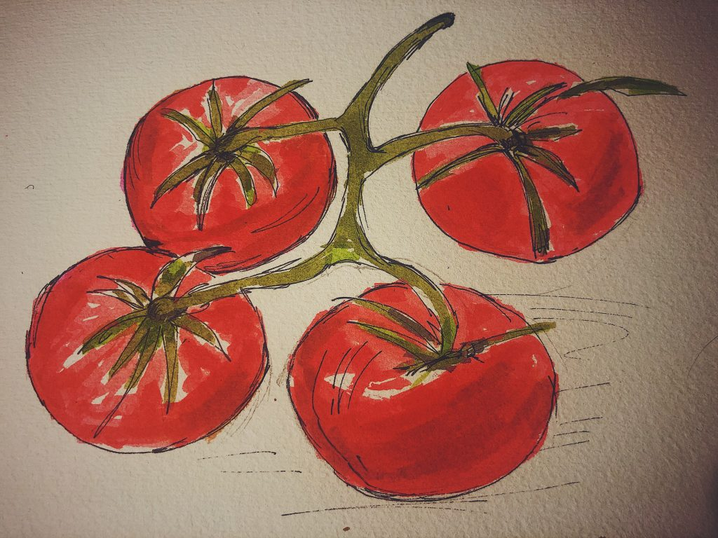 Pomidory rysunek Zosiu