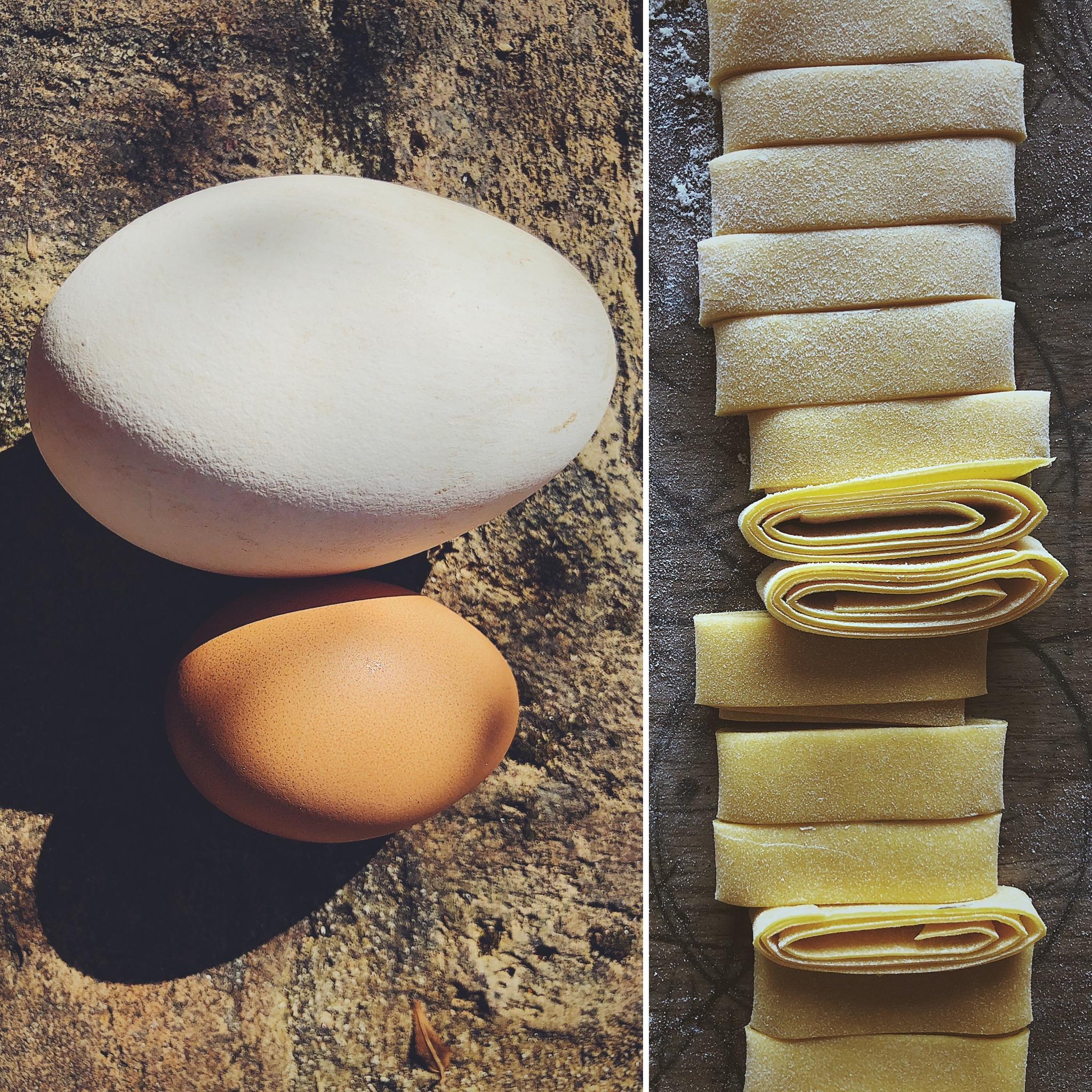 Jaja gęsie jak wykorzystać