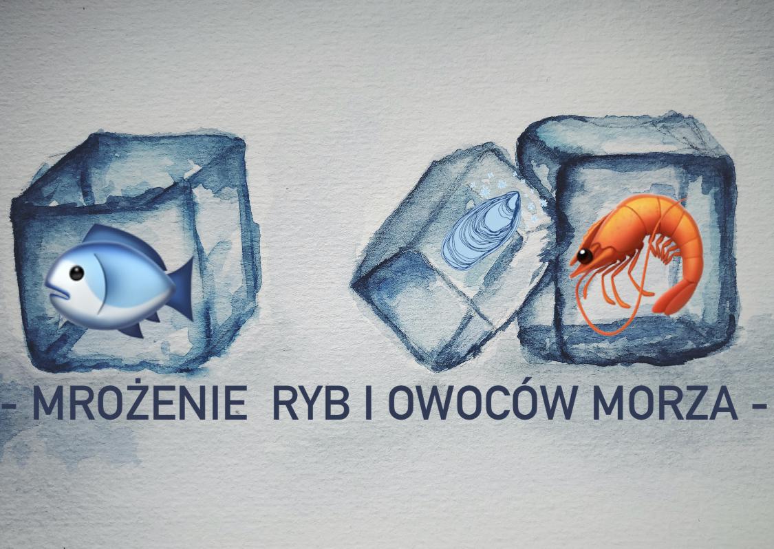 MROŻENIE RYB I OWOCÓW MORZA